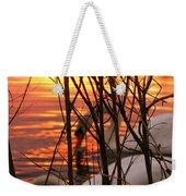 Swans 1 Weekender Tote Bag
