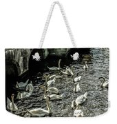 Swans On The Canal Weekender Tote Bag