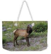 Sweet Elk Calf Weekender Tote Bag