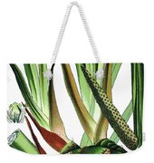 Sweet Flag Or Calamus, Acorus Calamus Weekender Tote Bag