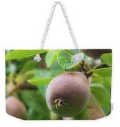 Sweet Fruit Weekender Tote Bag
