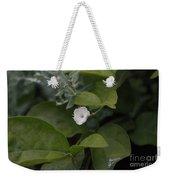 Sweet Jasmine  Weekender Tote Bag