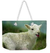 Swet Little Lamb Weekender Tote Bag