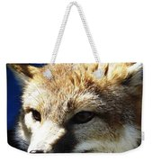 Swift Fox With Oil Painting Effect Weekender Tote Bag