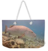 Swimming Right Along Weekender Tote Bag