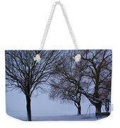 Swing In Winter Weekender Tote Bag