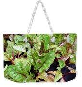 Swiss Chard In A Vegetable Garden 1 Weekender Tote Bag