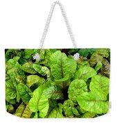 Swiss Chard In A Vegetable Garden 4 Weekender Tote Bag