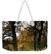 Swithland Woods, Leicestershire Weekender Tote Bag