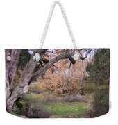 Sycamore Grove Fall Weekender Tote Bag