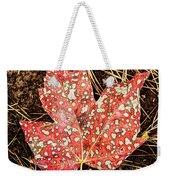 sycamore maple Autumn leaf Weekender Tote Bag