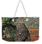 Sycamore Tree And Fall Leaves Weekender Tote Bag