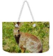 Symbol Of The Rabbit Weekender Tote Bag