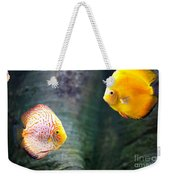 Symphysodon Discus Fishes Weekender Tote Bag