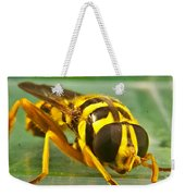 Syrphid Eye To Eye Weekender Tote Bag