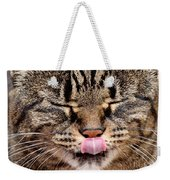 Tabby Kitty Cat Cute Funny Face Weekender Tote Bag