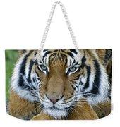 Takin A Break Tiger Weekender Tote Bag