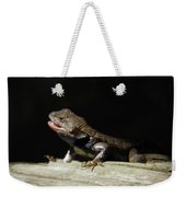 Talking Lizard Weekender Tote Bag