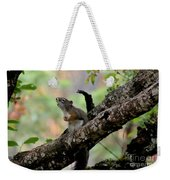 Talking Squirrel Weekender Tote Bag