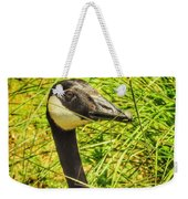 Tall Grasses Weekender Tote Bag