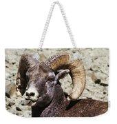 Taunting Bighorn Weekender Tote Bag