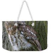 Tawny Owl Weekender Tote Bag