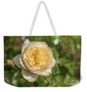 Tchaikovski Hybrid Tea Rose, White Rose Originally Produced By  Weekender Tote Bag