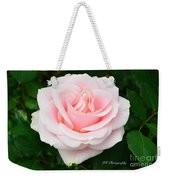 Tea Rose In Pink Weekender Tote Bag