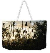 Teasel Sunset Glow Weekender Tote Bag