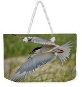 Tern Weekender Tote Bag