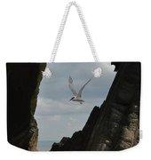 Tern Through The Gap Weekender Tote Bag
