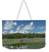 Teton Reflection With Buffalo Weekender Tote Bag