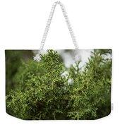 Texas Cedar Tree Weekender Tote Bag