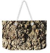 Texture106 Weekender Tote Bag