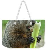 Thanks You For Growing A Garden Weekender Tote Bag