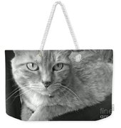 That Spotted Nose Weekender Tote Bag