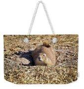 The Amazing Black-tailed Prairie Dog Weekender Tote Bag