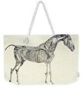 The Anatomy Of The Horse Weekender Tote Bag by George Stubbs