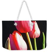 The Appearance Of Spring - Tulips Weekender Tote Bag