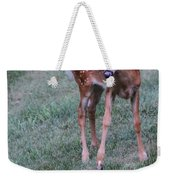 The Bambi Stance Weekender Tote Bag