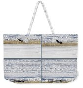 The Bath Of A Magpie Weekender Tote Bag