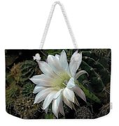 The Beauty Of Cactus Weekender Tote Bag