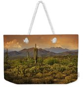 The Beauty Of The Sonoran Desert  Weekender Tote Bag