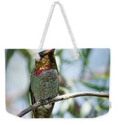 The Bird In The Foil Mask -- Anna's Hummingbird In Templeton, California Weekender Tote Bag
