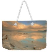 The Birds And The Ice Weekender Tote Bag