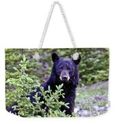 The Black Bear Stare Weekender Tote Bag