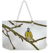 The Bold One. Eurasian Blue Tit Weekender Tote Bag