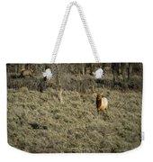 The Bull Elk Weekender Tote Bag