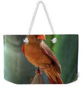 The Cardinal  Weekender Tote Bag