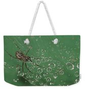 The Catcher Of Shperes Weekender Tote Bag